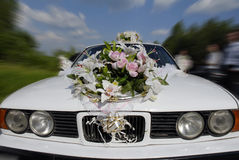 Wedding car. Supersonic speed of wedding car with sweetheart Royalty Free Stock Image