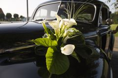 Wedding car. Flowers on car royalty free stock photos