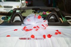 Wedding car back view and petals on top. Luxury wedding car decorated with flowers.just married sign and cans attached. Royalty Free Stock Photo