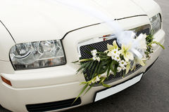 Wedding car front. Part of creamy wedding car with attached to the front bouquet, veil and blank license number plate Stock Photos