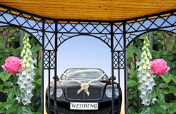 Wedding car pergola. Photo of a wedding car with ornate pergola with side panels of roses and foxgloves Royalty Free Stock Photos