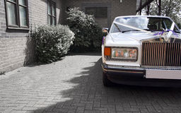 The wedding car. A white Rolls Royce with wedding ribbons stock image