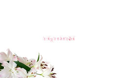 Wedding card. Elegant wedding invitation with lily in the left corner Royalty Free Stock Photography