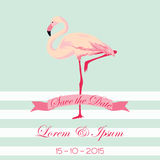 Wedding Card with Flamingo Royalty Free Stock Images