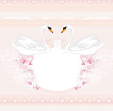 Wedding card with two romantic swans Royalty Free Stock Images