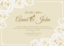 Wedding card - white rose floral frame and soft yellow cream background vector template design Stock Image