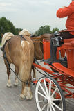 Wedding carriage. The red wedding carriage with the driver and pair horses Stock Photo