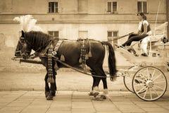 Wedding carriage Royalty Free Stock Photos