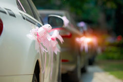 Wedding cars with ceremonial ribbon, rear view Stock Photography