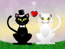 Wedding of cats. Illustration of two cats in love Stock Photography
