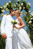 Wedding celebration Royalty Free Stock Images
