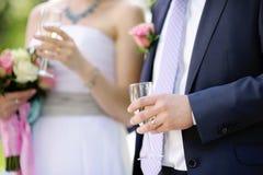 Wedding celebration Royalty Free Stock Photos