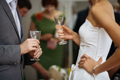 Wedding celebration Royalty Free Stock Photography