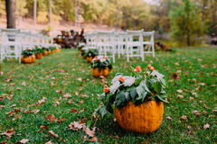Wedding ceremony with autumn pumpkins. Close-up, outdoor Royalty Free Stock Photo