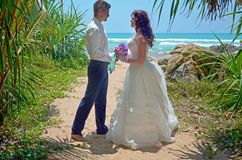 Wedding ceremony on beach in tropical palm tree, wedding and honeymoon. Beautiful bride and groom in the tropics on the island stock images