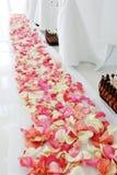 Wedding ceremony. Stock Photography