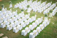 Wedding ceremony in beautiful garden Stock Photography