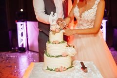Free Wedding Ceremony. Bride And Groom Cutting Cake Royalty Free Stock Images - 132010709