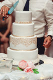 Wedding ceremony. the bride and groom make their first case together, cut the wedding cake royalty free stock photos