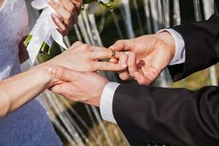 Wedding ceremony. The bride and groom. Exchange rings against the wedding arch Royalty Free Stock Photos