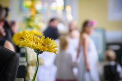 Wedding ceremony Stock Photography