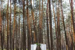Wedding ceremony in the forest. Beautiful gentle arch.  Royalty Free Stock Image