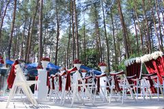 Wedding ceremony in forest Stock Photo