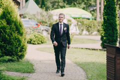 Wedding ceremony outdoors in the woods Royalty Free Stock Photography