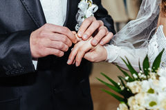 Wedding ceremony. Registry office. A newly-married Royalty Free Stock Photos