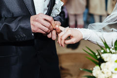 Wedding ceremony. Registry office. A newly-married Royalty Free Stock Image