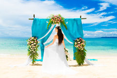Wedding ceremony on a tropical beach. Happy bride under the wedd Stock Image