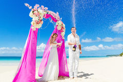 Wedding ceremony on a tropical beach in purple. Happy groom and Royalty Free Stock Photography