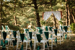 Wedding ceremony in the woods. Among the trees on the green track Stock Image
