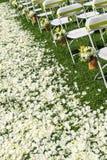 Wedding chair Stock Photo