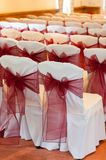 Wedding chair bows Stock Image