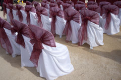 Wedding  Chairs. Empty wedding chairs are lined for the day Stock Image