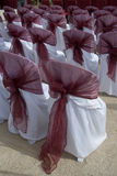 Wedding  Chairs. Empty wedding chairs are lined for the day Royalty Free Stock Images