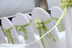 Wedding chairs. White rose decoration on a wedding chair cover Royalty Free Stock Photo