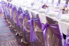 Wedding chairs with silk ribbons. Wedding chairs with purple silk ribbon Royalty Free Stock Photography