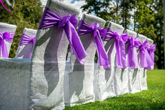 Wedding chairs. White wedding chairs with purple bows outdoors Royalty Free Stock Photos