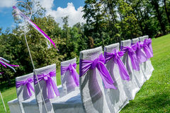 Wedding chairs. White wedding chairs with purple bows outdoors Stock Image