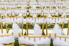 Wedding chairs. With white ribbon Royalty Free Stock Photography