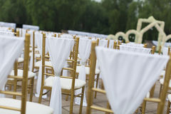 Wedding chairs. With white ribbon Stock Photos