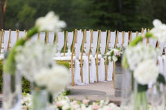Wedding chairs. With white ribbon Royalty Free Stock Images