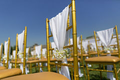 Wedding chairs. With white ribbon royalty free stock image