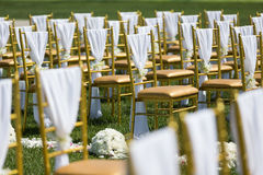 Wedding chairs. With white ribbon Stock Photo