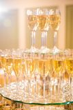 Wedding Champagne glasses. At indoor wedding stock images