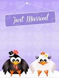 Wedding of chickens Stock Image