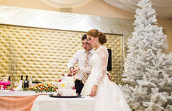 Wedding in Christmas. Bride and groom eating cake at reception Royalty Free Stock Image