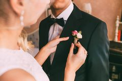 Wedding . Close-up bride`s hands pinning boutonniere to groom`s tuxedo. Warm tones. Stock Photo